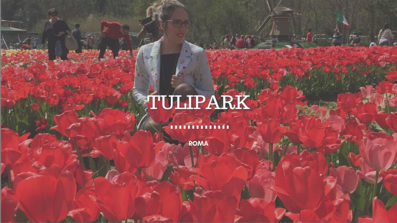 Tulipark sosteniamo il regno dei tulipani