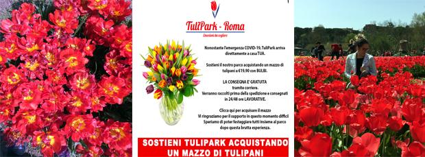 L'iniziativa del Tulipark causa coronavirus