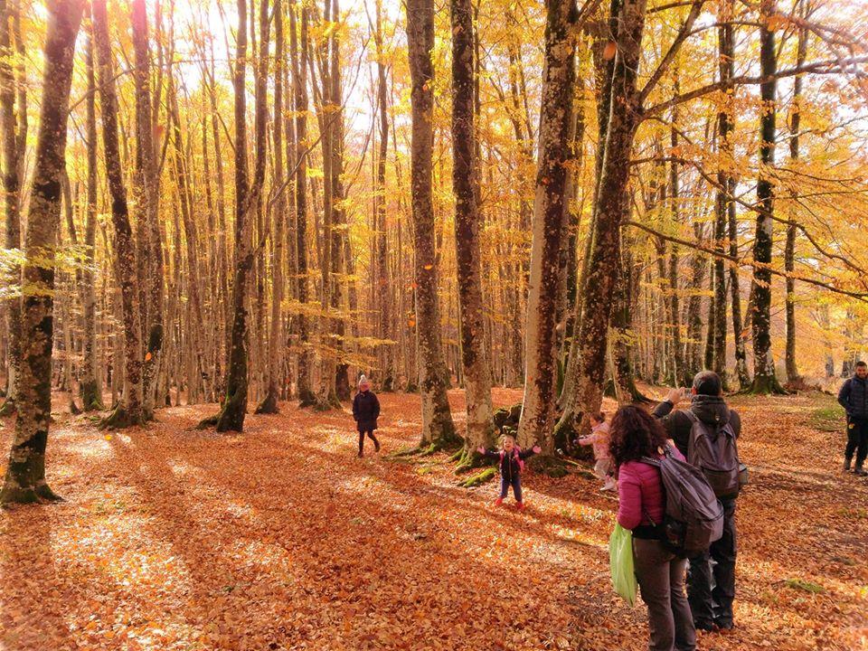 Un escursione tra la natura - credit: Roberta Taschera