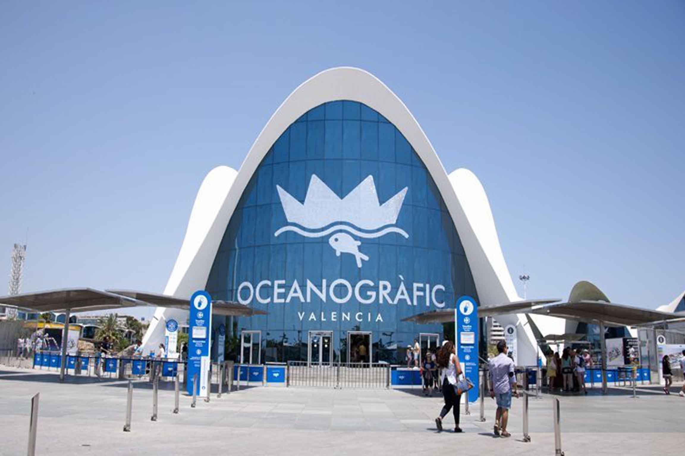 Acquario Oceanografic di Valencia, il mondo marino a portata di tutti