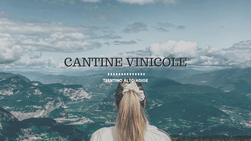 Cantine vinicole del Trentino, i tour da non perdere